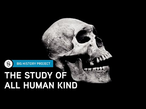 Intro to Anthropology | Big History Project