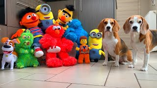 Dogs SURPRISED by Plush Puppets Invasion | Funny Dog Reactions