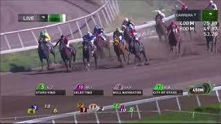 Vidéo de la course PMU QUINTO PUEBLO
