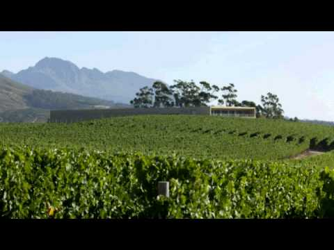 Glenelly Wine Estate: A French Adventure on African Soil