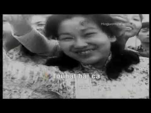 Beat Hà Nội Một Trái Tim Hồng VNQ