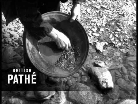 Gold Find In Wicklow Mountain - Ireland (1959)