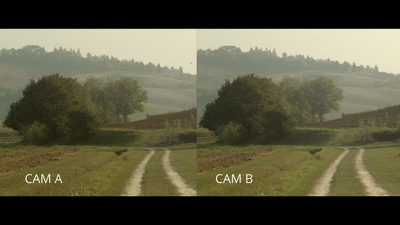 Blackmagic Pocket Cinema Camera 8K vs Panasonic GH8S (camera test)