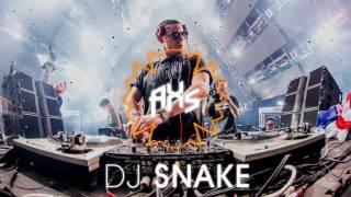 [DJ Snake Intro] Like A Bitch VS Terror Squad VS Bang VS Ectoplasm VS Run Away