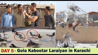 Ustad Muhammad Deen K 200 Gola Pigeons Fight in Ramswami Karachi - Part 3 thumbnail