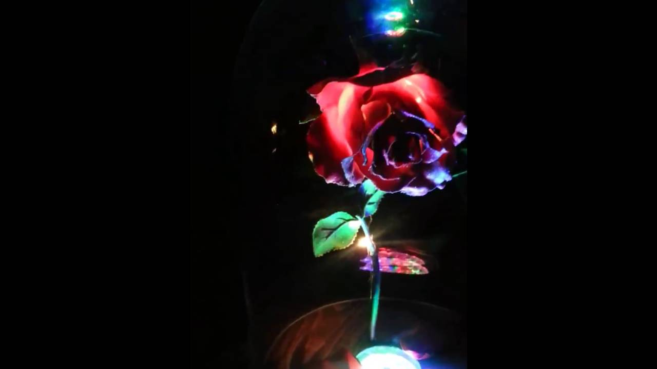 how to make enchanted rose