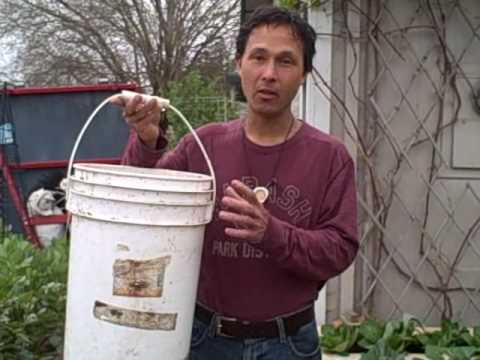 The Many Uses of a 5 Gallon Plastic Bucket in the Garden