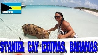 Paradise in Staniel Cay, Exumas Bahamas Swimming Pigs Friendly Nurse Sharks