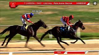 Vidéo de la course PMU PREMIO SAMOS