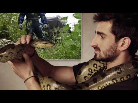 10 людей, которые занялись ЭТИМ с животными - Познавательные и прикольные видеоролики