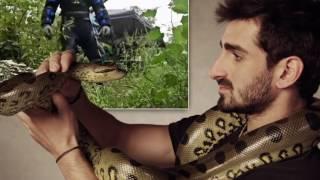 10 людей, которые занялись ЭТИМ с животными