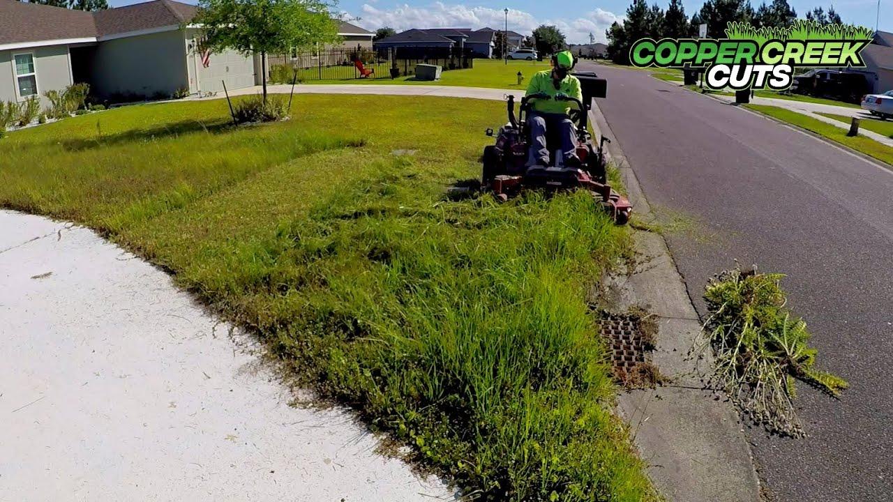$45 An Hour Mowing Tall Grass