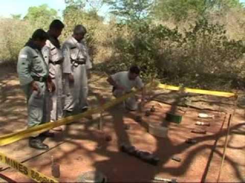 Women clear landmine legacy
