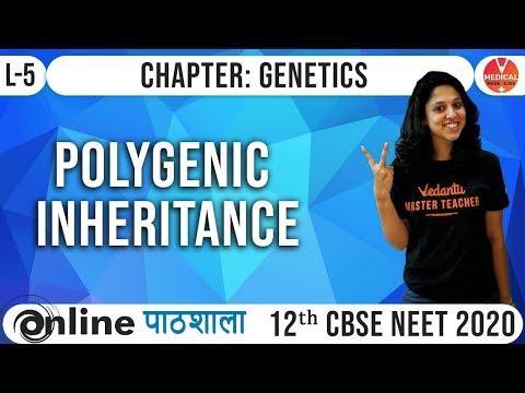 Biology Genetics Class 12 | Polygenic Inheritance L-5 | Neet/Aiims/Jipmer 2020 Syllabus