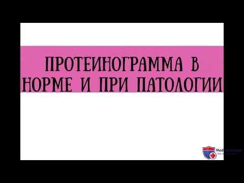 Анализ протеинограммы в норме и при патологии - meduniver.com
