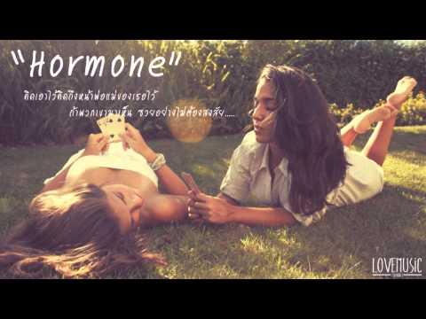 Groove Rider - Hormone