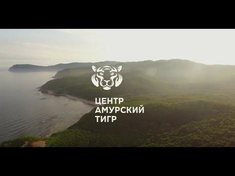 Россия Осенью, Зимой, Весной, Летом - Сезоны и Погода в