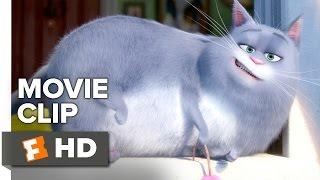 Das Geheime Leben der Tiere-Film-CLIP - Neuer Hund (2016) - Louis C. K., Lake Bell Film HD