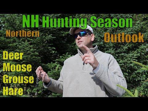 Northern NH Hunting Season Outlook :: Mid Sept 2019