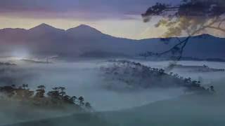 Giọt Lệ Thiên Thu _ Tiếng Hát Cố Nhạc Sĩ Trịnh Công Sơn