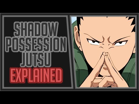 Explaining the Shadow