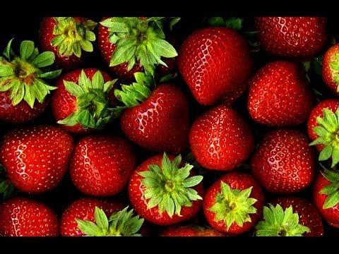 All you need to Learn About Berries