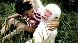 Incredible Cases Of Albino Animals
