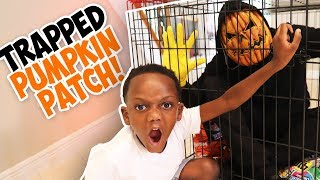 We TRAPPED PUMPKIN PATCH!