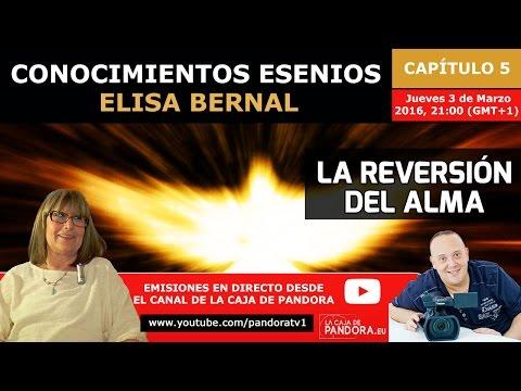 LA REVERSIÓN DEL ALMA por Elisa Bernal