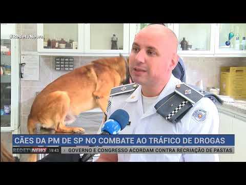 Cães da PM-SP ajudam a apreender quase 3 toneladas de drogas em 2019