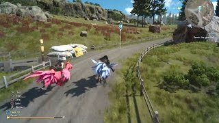 FINAL FANTASY XV - Chocobo Race Vs Iris l Final Chocobo Race