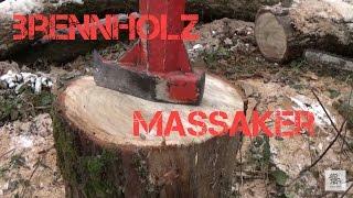 #83 Brennholz machen im Wald / Ich und mein Holz :)