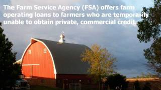 Farm Operating Loans (Direct and Guaranteed)