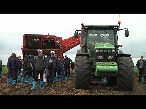 День картофельного поля в Самаре 2019