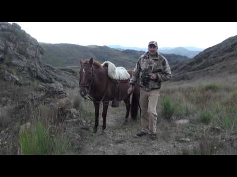 Red Stag Hunting On Horseback - Fair-chase With Cabela's Outdoor Adventures