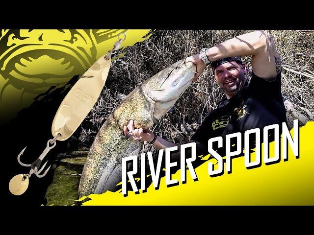 Spinnfischen auf Wels vom Kajak am Fluss mit dem BLACK CAT - BATTLE RIVER SPOON
