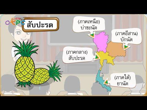 ภาษาไทยมาตรฐาน และภาษาถิ่น - ภาษาไทย ป.3