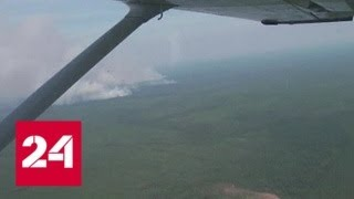 Фото Красноярские леса продолжают гореть - Россия 24