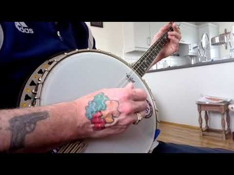 advice needed on buying new tenor banjo on The Session