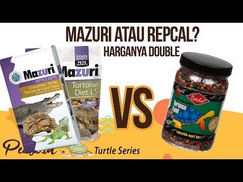 Perbandingan Mazuri dan Repcal - Makanan Kura-Kura Darat import
