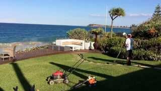 Mowing the lawn How to mow cut grass Honda Mower Stihl Trimmer and Leaf Blower Pittwater Mowing