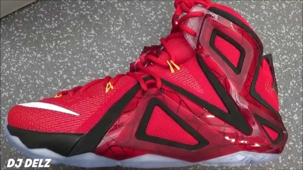 70a5c33aad428 Nike Lebron 12 ELITE Team Sneaker REAL Review With  DjDelz  HotOrNot -  YouTube