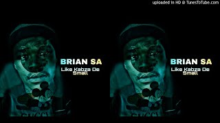 ... brian sa came back with a new fresh amapiano single which he titles 'like kabza de small' small moteva...