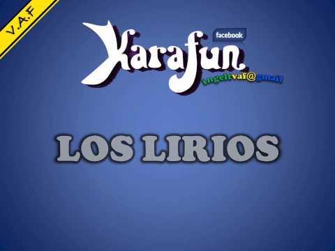 HOY TUS OJOS LLORAN POR AMOR - LOS LIRIOS ( karaoke ) - VAF
