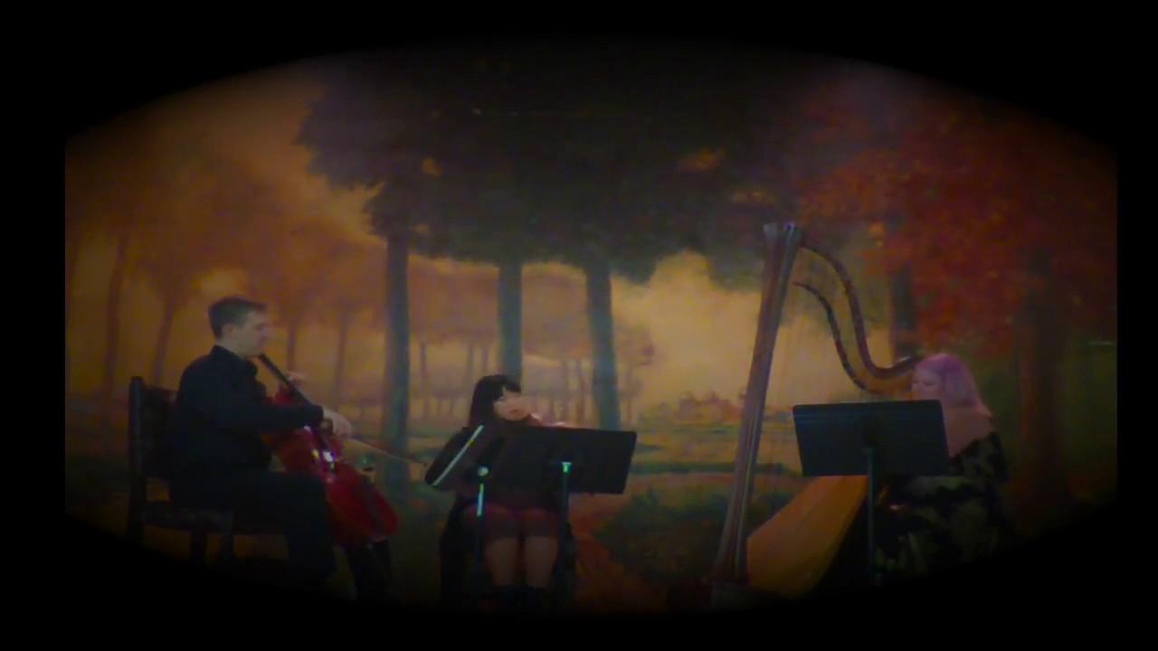 Wedding Music - Los Angeles Area - Harpist - Jillian