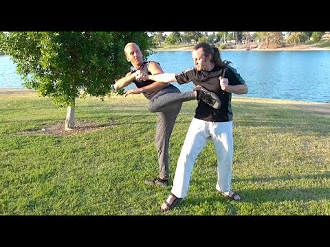 3 Moves to WIN the STREET FIGHT  REAL KUNG FU  Ippon, 一本, Yī Běn