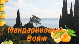 Мандариновый вояж или в поисках халявы.Абхазия- Новый Афон Ноябрь 2015(, 2015-11-20T18:02:36.000Z)