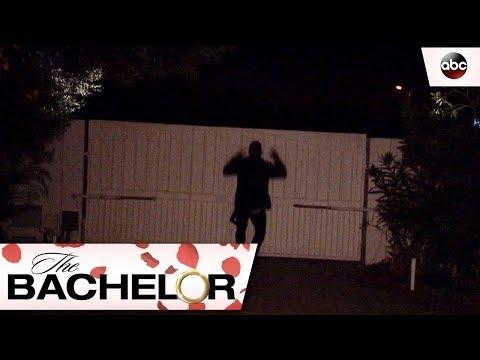 Fence Jump – The Bachelor