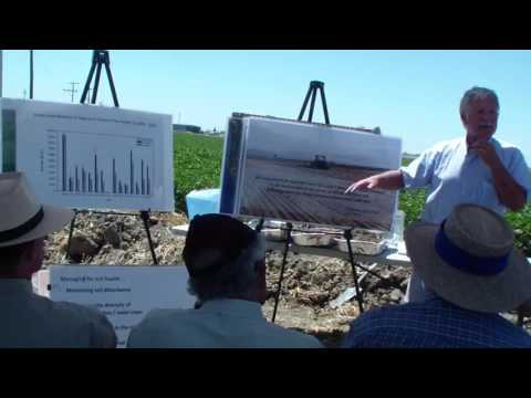 Soil function, soil health principles in cotton and incentive opportunities for you