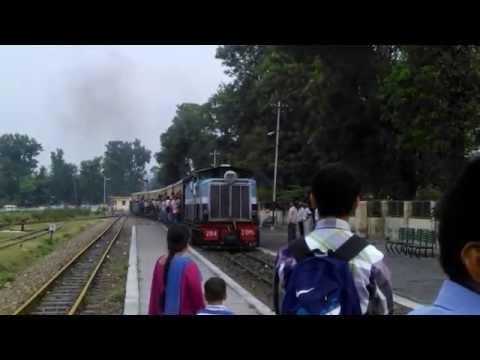Toy Train arriving at Nagrota Railway Station, Nr. Dharamshala, Himachal Pradesh